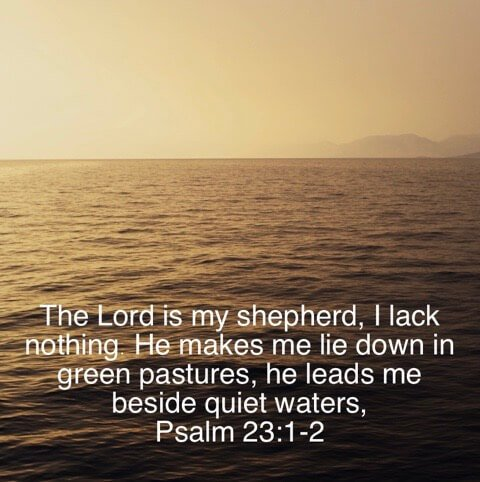 God is with you Bible Verse Psalm 23:1-2. The Lord is my shepherd.