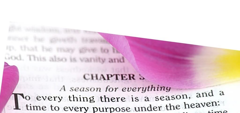 Bible verse Ecclesiastes 3:1, To everything there is a season